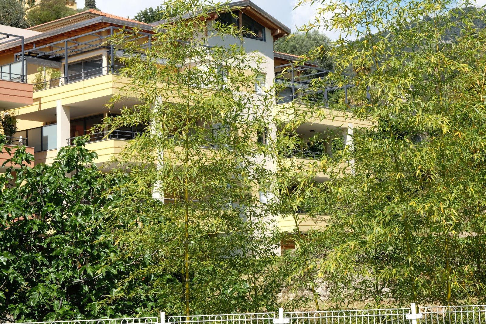 vente menton garavan appart 4p 110m2 terrasse 60m2 jardin 140m2. Black Bedroom Furniture Sets. Home Design Ideas